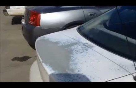 2000 Dodge Stratus Headlights in North Carver 2355 MA