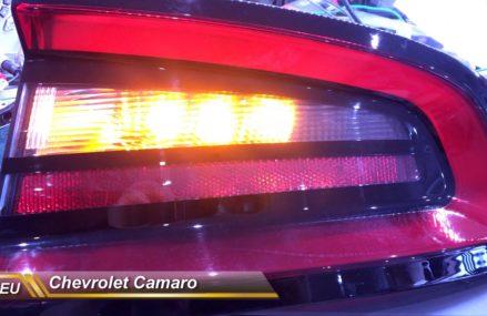 Dodge Caliber Indicator Lights at Corpus Christi 78414 TX USA