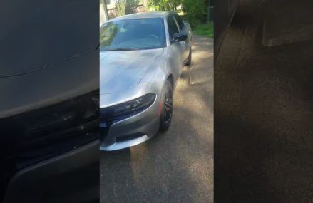 2018 dodge charger sxt blacktop package! From 60401 Beecher IL