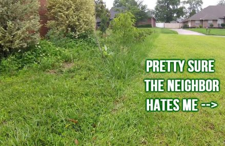 Torture Testing ECHO Battery String Trimmer In Tall Weeds & Grass (Real Time, Raw Audio) Near Mannsville 73447 OK