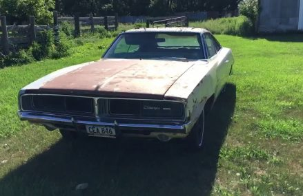 Two 1969 Dodge chargers found being guarded by killer mosquitoes and rust Now at 17503 Bart PA